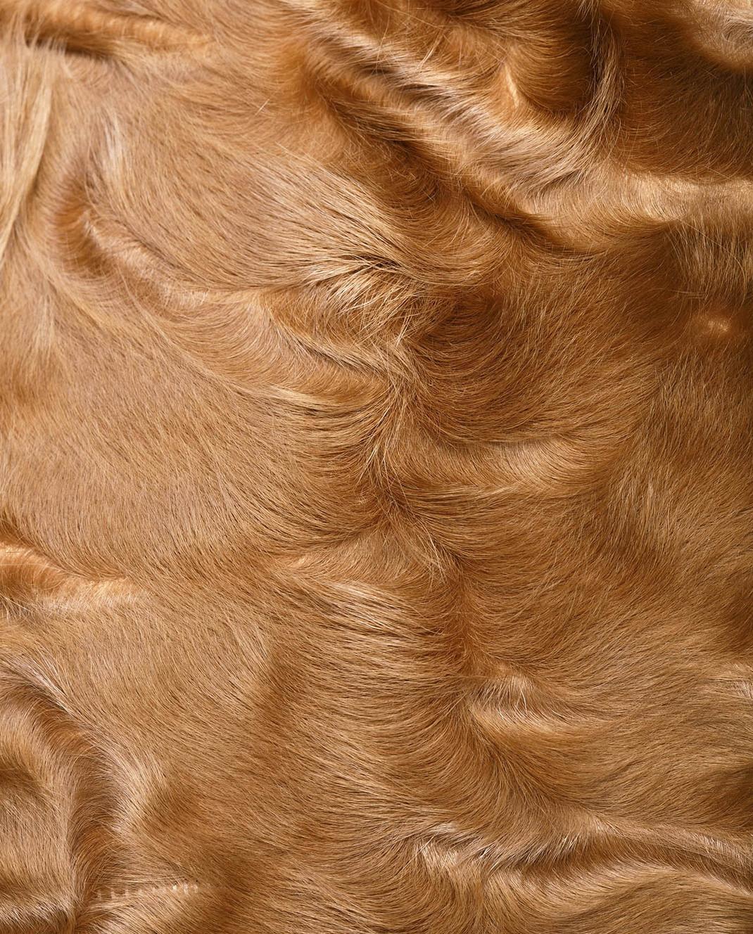 Yves Salomon Бежевое пальто из шерсти с деталями из меха ягненка 8WYM70580JNCA изображение 5